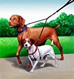 Sporn Double Dog Leash - Two Dog Leash Med- XL, black