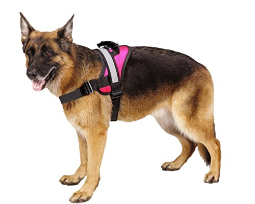 Big Dog Soft Reflective No Pull Pink Harness size M 20-26inch (Simply Dog Body Harness compare prices)