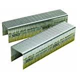 Senco P13BAB 16 Gauge by 1-inch Crown by 1-inch Length Electro Galvanized Staples (10,000 per box) (Tamaño: 1-(Pack))