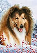 Shetland Sheepdog Sable by Tamara Burnett Winter Berries Garden Dog Breed Flag 12'' x 18