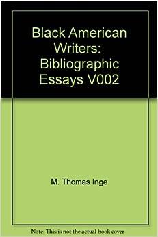 an american novelist essay