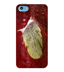 ColourCraft Lovely Feather Design Back Case Cover for APPLE IPHONE 5C