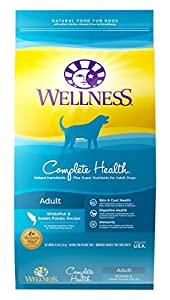 Wellness Complete Health Whitefish & Sweet Potato Natural Dry Dog Food, 30-Pound Bag