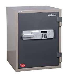 Hollon Fireproof Data Safe 1 hour Fire Rated, 1.02 Cu. Ft. HDS-750E