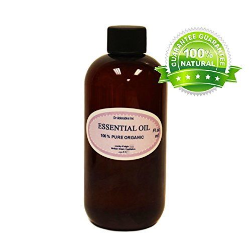Ravintsara Essential Oil 100% Pure & Organic 8 oz