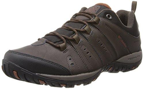 Columbia Peakfreak Nomad Waterproof Scarpe da Trekking, Uomo, Marrone (231), 9