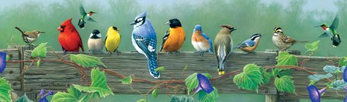 Buffalo Games Songbirds Panoramic