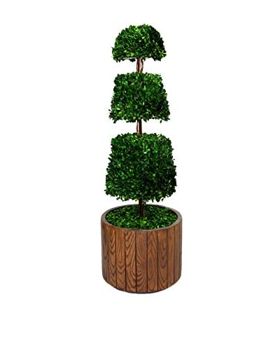 Laura Ashley 49 Preserved Spiral Boxwood Cone Topiary in Planter