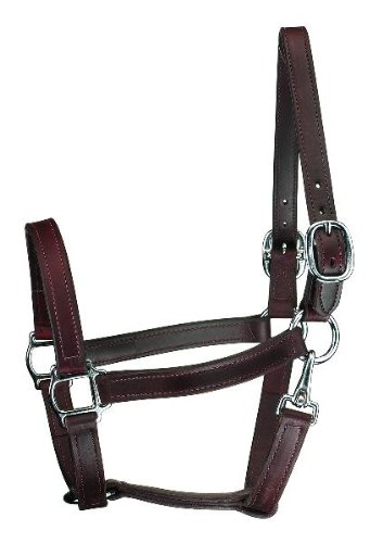 Perri's Track Style Leather Turnout Halter with Snap and Silver Hardware, Havana, Cob