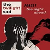Forget The Night Ahead [VINYL]