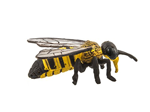Safari Ltd Honey Bee Hidden Kingdom Insects