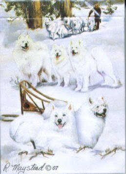 Best Friends Playing Cards, by Ruth Maystead - Samoyeds - 1