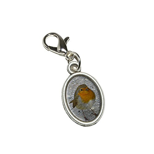 Graphics and More Robin Bird Antiqued Bracelet Pendant Zipper Pull Oval Charm with Lobster Clasp
