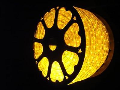 LED ROPE LIGHT, BRILLIANT AMBER LED ROPE LIGHT KIT FOR 120V, Christmas Lighting, Outdoor Rope Lighting