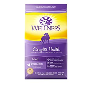 Wellness Complete Health Chicken & Oatmeal Natural Dry Dog Food, 5-Pound Bag