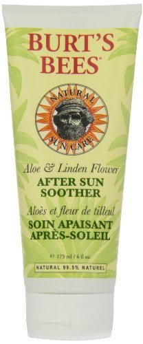 Burt's Bees Aloe After Sun Soother 175ml by Burt's Bees (English Manual) spelling bees fd