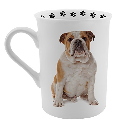 Dimension 9 Bulldog Coffee Mug, White (Bulldog Coffee compare prices)