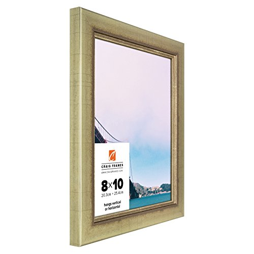 Craig Frames 2231100 16 by 20-Inch Picture Frame, Smooth Wrap Finish, 1.25-Inch Wide, Vintage Gold (Cheap Picture Frames 16x20 compare prices)