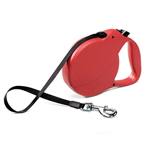 Dog Collar With Retractable Lead