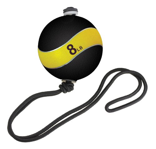 Altus Athletic Altus 8-Pound Swing Core Crunch Ball