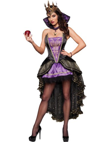 Evil Queen Adult Costume Lg Adult Womens Costume