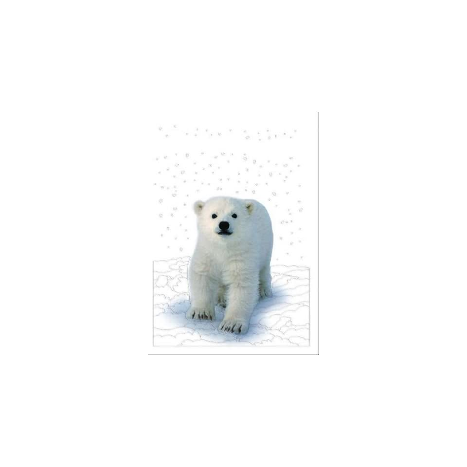 National Geographic Christmas Cards.National Geographic Polar Bear Christmas Card On Popscreen