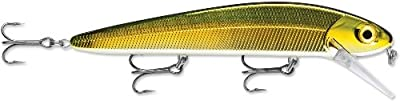Storm Flatstick 16 Fishing Lure from Storm