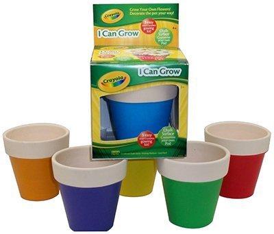 crayo-chalk-flwrpot-kit-by-triumph-plant