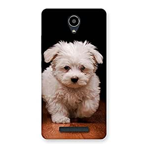 Special Cute Walking Dog Back Case Cover for Redmi Note 2