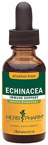 Herb Pharm Certified Organic Alcohol-Free Echinacea Glycerite for Immune Support - 1 Ounce