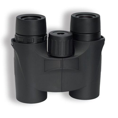 Sightron Siiims832 8X32 Binocular, Black
