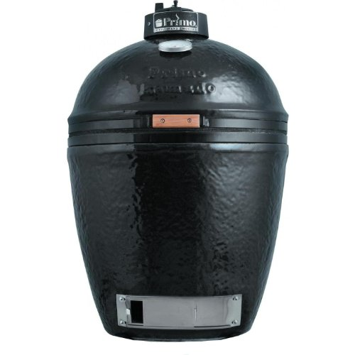 Shark Canister back-422560