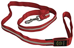 Nite Dawg Leash, Large, Red