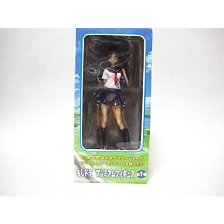 Dora PM Premium Figure Kawashima Minami all one if (japan import)