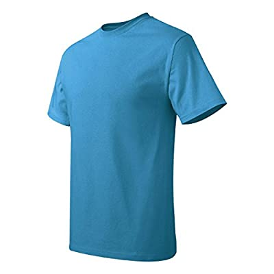 Hanes Men's Tagless T-Shirt (Sapphire)