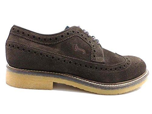 scarpe uomo HARMONT & BLAINE 42,5 marrone camoscio WH712