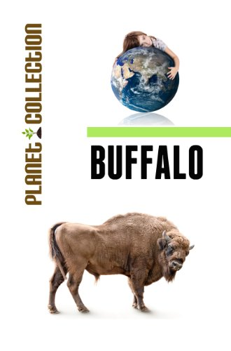 Buffalo: Picture Book (Educational Children's Books Collection) - Level 2 (Planet Collection)