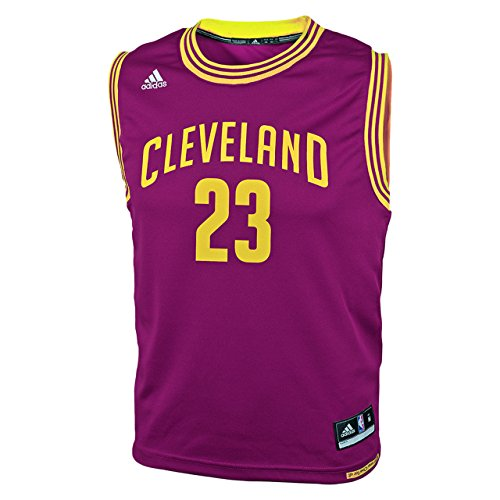 best cheap af106 b07e2 Lebron James Cleveland Cavaliers Youth Replica Jersey ...