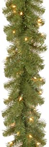 National Tree 9-Feet by 10-Inch North…