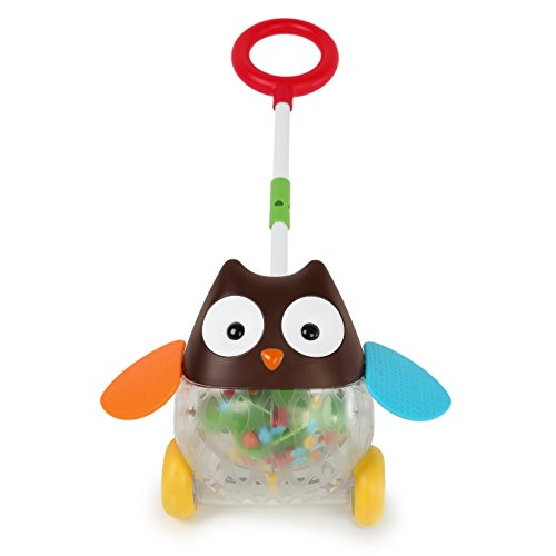 Skip Hop Explore and More Rolling Owl Push Toy, Multi