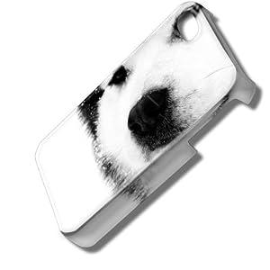 Chiens 10006, Husky, 3D Design Coque Arriere Rigide Coquille Housse Case Cover Couverture avec Dessin Coloré pour Apple iPhone 4 4S.