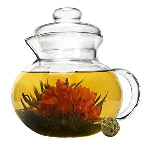 Primula Glass Stovetop Tea Pot with Infuser