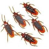 niceEshop(TM) 10Pcs x Fake Roaches Prank Novelty Cockroach Bugs Look Real