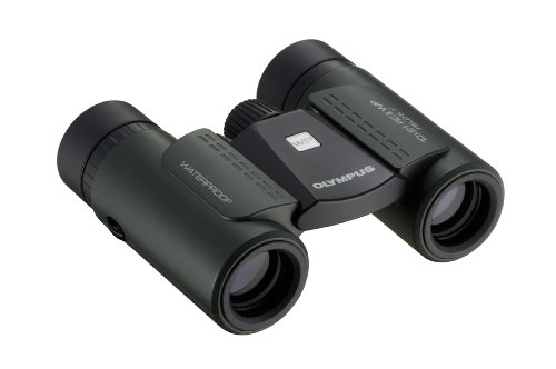 Olympus 10 X 21 Rcii Wp Magnification Waterproof Foldable Binocular V501014Du00