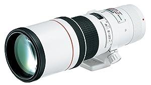 Canon EF 400mm f/5.6 L USM Lens