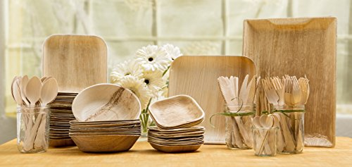 Leafware Party Pack - Natural Palm Leaf Dinnerware Set (Bamboo Dishes compare prices)