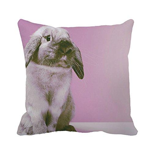 yinggouen-cute-animale-decorate-per-un-divano-federa-cuscino-45-x-45-cm