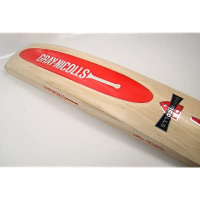 Gray Nicolls Scoop English Willow Cricket Bat, Short Handle