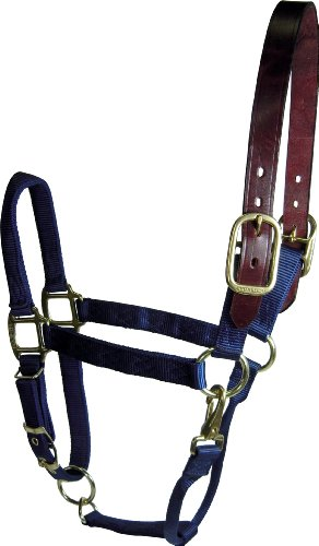 Hamilton 1 Adjustable Leather Head Poll Halter with Brass Snap, Large Size (1100-1600 Pounds), Navy