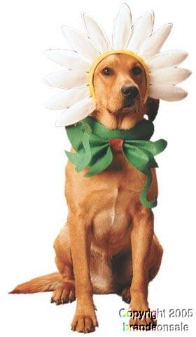Pet Daisy Dog Halloween Costume For Large Dogs